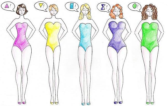 Les différentes morphologies